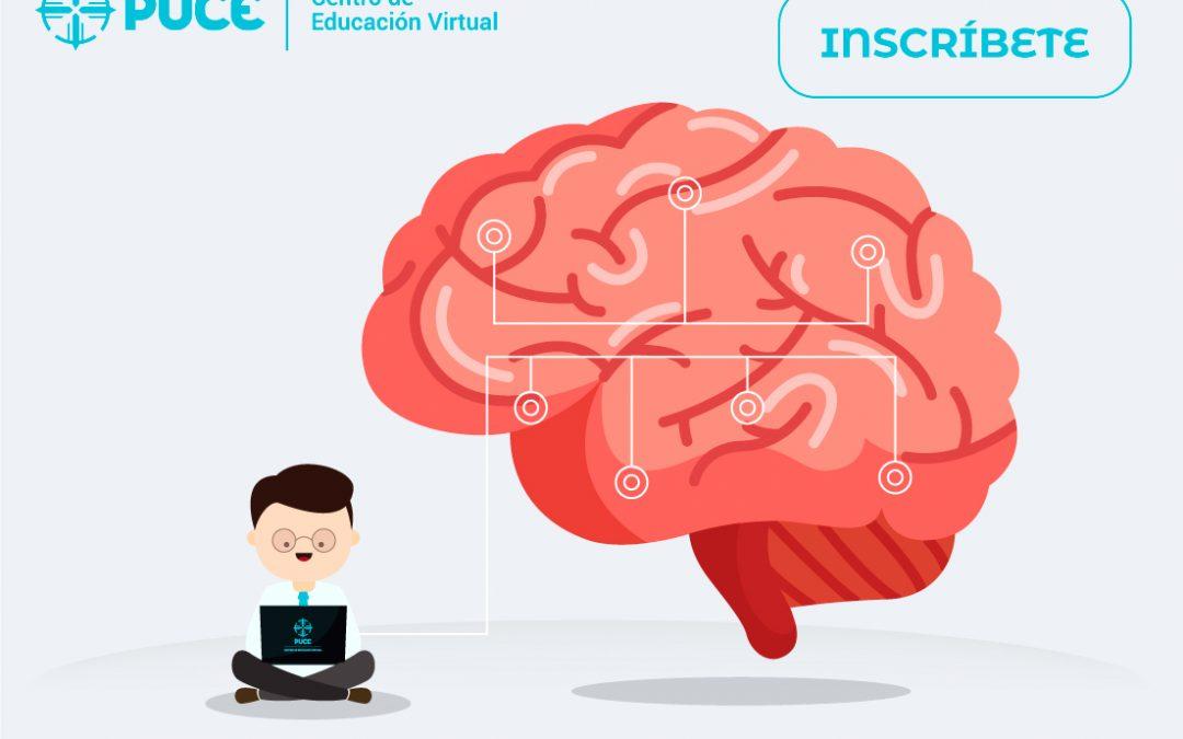 Certificación en Neurociencia aplicada a la docencia universitaria